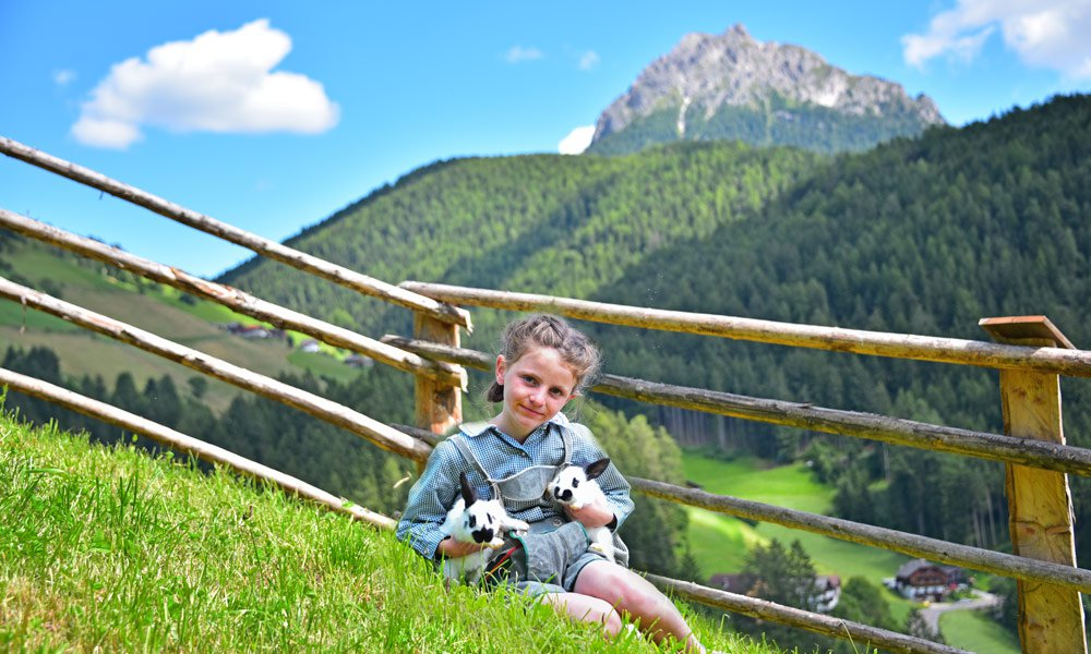 Enjoy nature at first hand during farm holidays at Kronplatz