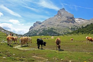 Alpine hut in the Dolomites 2